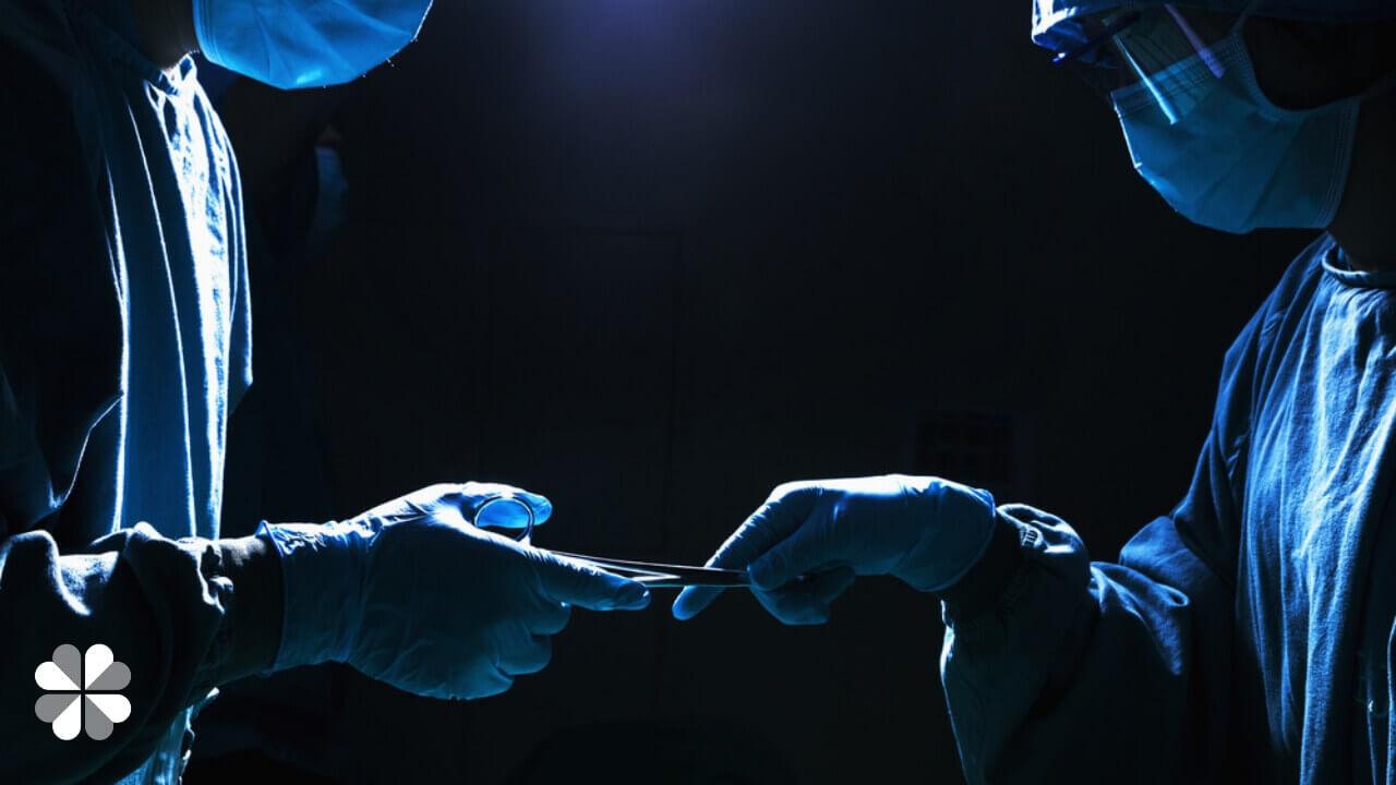 organ transplants (1)